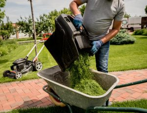 How to start a grass cutting business in South Africa
