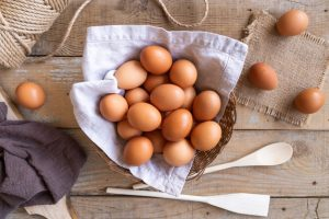 How to start an egg business in South Africa