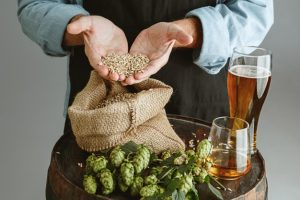 How to start a microbrewery in South Africa