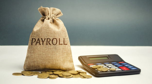 How to start a payroll company in South Africa