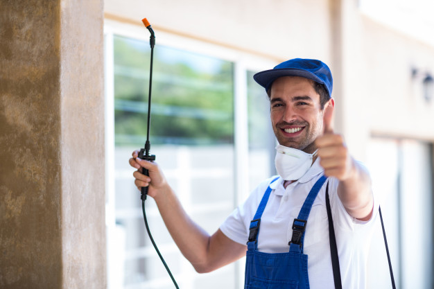 How to start a pest control business in South Africa
